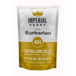 Imperial (A04) Barbarian...