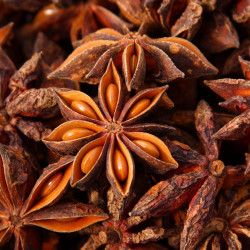 Brewers Garden Star Anise