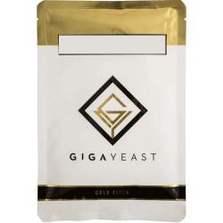 GigaYeast GY014 Belgian...